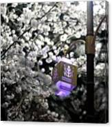 Streetlights In Blossoms Canvas Print