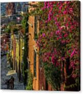 Streets Of San Miguel Canvas Print