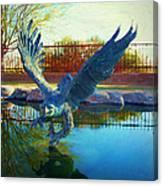 Strength Renewed Canvas Print