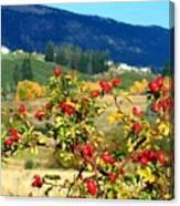 Striking Autumn Red Canvas Print
