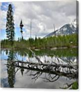 String Lake In Grand Tetons Canvas Print