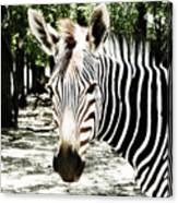 Stripes And Symmetry  Canvas Print