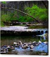Strolling By The Stream Canvas Print