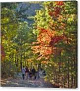 Strolling The Upper Cascades Trail Canvas Print