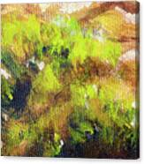 Structure Of Wooden Log Covered With Moss, Closeup Painting Detail. Canvas Print