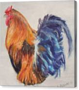 Strutting Rooster Canvas Print