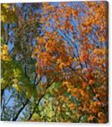 Study For Autumn 2 Canvas Print
