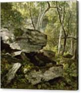 Study From Nature   Rocks And Trees Canvas Print