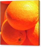 Study In Orange Canvas Print