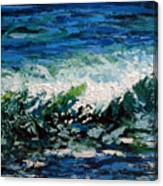 Study Of A Wave Canvas Print