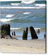 Stumpy Beach Canvas Print