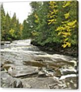 Sturgeon River Canvas Print