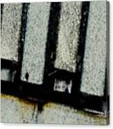 Subdivisions Canvas Print