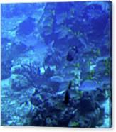 Submarine Underwater View Canvas Print