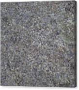Subtle Lichen On Granite Texture Canvas Print