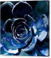 Succulent In Blue Canvas Print