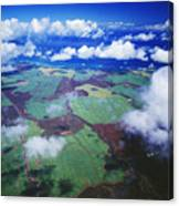 Sugarcane Fields In Central Maui Canvas Print