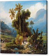 Sugarcane Plantation Of San Esteban Near Puerto Cabello, Venezuela Canvas Print