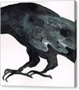 Sulky Bird Canvas Print
