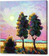 Summer Afternoon In The Fields Canvas Print