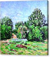 Summer Afternoon. Canvas Print