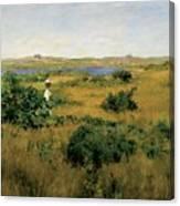 Summer At Shinnecock Hills Canvas Print