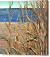 Summer Beach Grasses Canvas Print