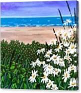 Summer Breezes Make Me Feel Fine Canvas Print