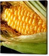 Summer Corn Xl Farm Nature Harvest Canvas Print