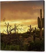 Summer Desert Skies  Canvas Print