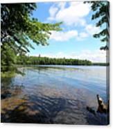 Summer Dreaming On Lake Umbagog  Canvas Print