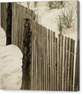 Summer Dunes Canvas Print