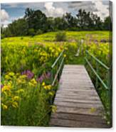 Summer Field Of Wildflowers Canvas Print