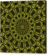 10696 Summer Fire Mask 54 Kaleidoscope 1 Canvas Print