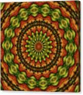 10698 Summer Fire Mask 54 Kaleidoscope 3 Canvas Print