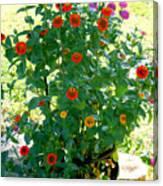 Summer Flowers 10 Canvas Print