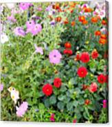 Summer Flowers 3 Canvas Print
