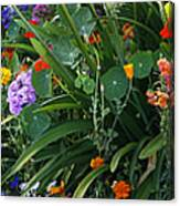 Summer Garden 2 Canvas Print