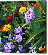 Summer Garden 3 Canvas Print