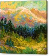 Summer High Country Canvas Print
