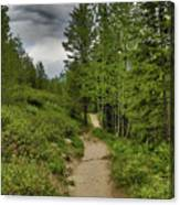 Summer Hike And Storm Clouds Canvas Print