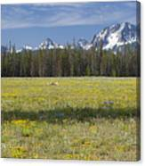 Summer In The Sawtooths Canvas Print