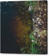 Summer Lake - Aerial Photography Canvas Print