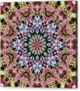 Garden Kaleidoscope At Olbrich >> Summer Leaves Kaleidoscope Olbrich Botanical Gardens Digital Art By
