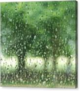 Summer Mist Canvas Print
