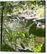 Summer Mountain Creek Canvas Print