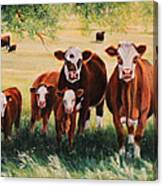 Summer Pastures Canvas Print