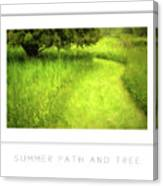 Summer Path And Tree Poster Canvas Print