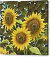 Summer Quintet Canvas Print