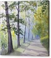 Summer Road Canvas Print